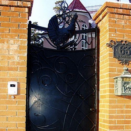 Кованые ворота и калитка - 09.